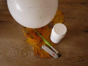 Kinder basteln mit Naturmaterialien im Herbst. Aus diesem kunterbunten Sammelsurium entsteht eine Laubschüssel. foto (c) kinderoutdoor.de