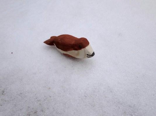 Sieht aus wie das Original: Unser Seehund für den wir die Anleitung zum Schnitzen haben. foto (c) kinderoutdoor.de