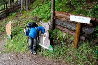 Wandern mit Kindern in der Steiermark ist abwechslungsreich, wie hier am Erlebsnispfad am Sattelberg. foto (c) kinderoutdoor.de