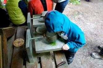 Mit der Lupe beobachten die Kinder wie Pflanzen aus dem Wald vergrößert aussehen. foto (c) kinderoutdoor.de