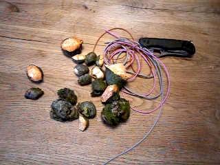 Aus Baumperlen, Schnur oder Lederband und dem Taschenmesser baut Ihr Euch dieses geniale Perlenkette. foto (c) kinderoutdoor.de