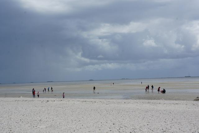 Auf deutschen Inseln wandern mit Kindern: Von Amrum geht es durch das Watt nach Föhr. foto (c) kinderoutdoor.de