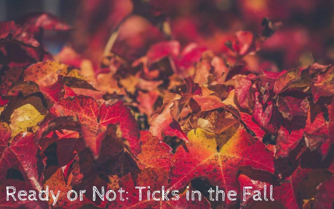 Ticks in the Fall: Be Prepared with Natural Pest Control