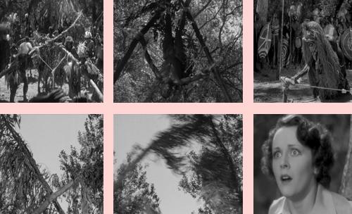 Traumafessions :: Reader sbd on Tarzan Escapes