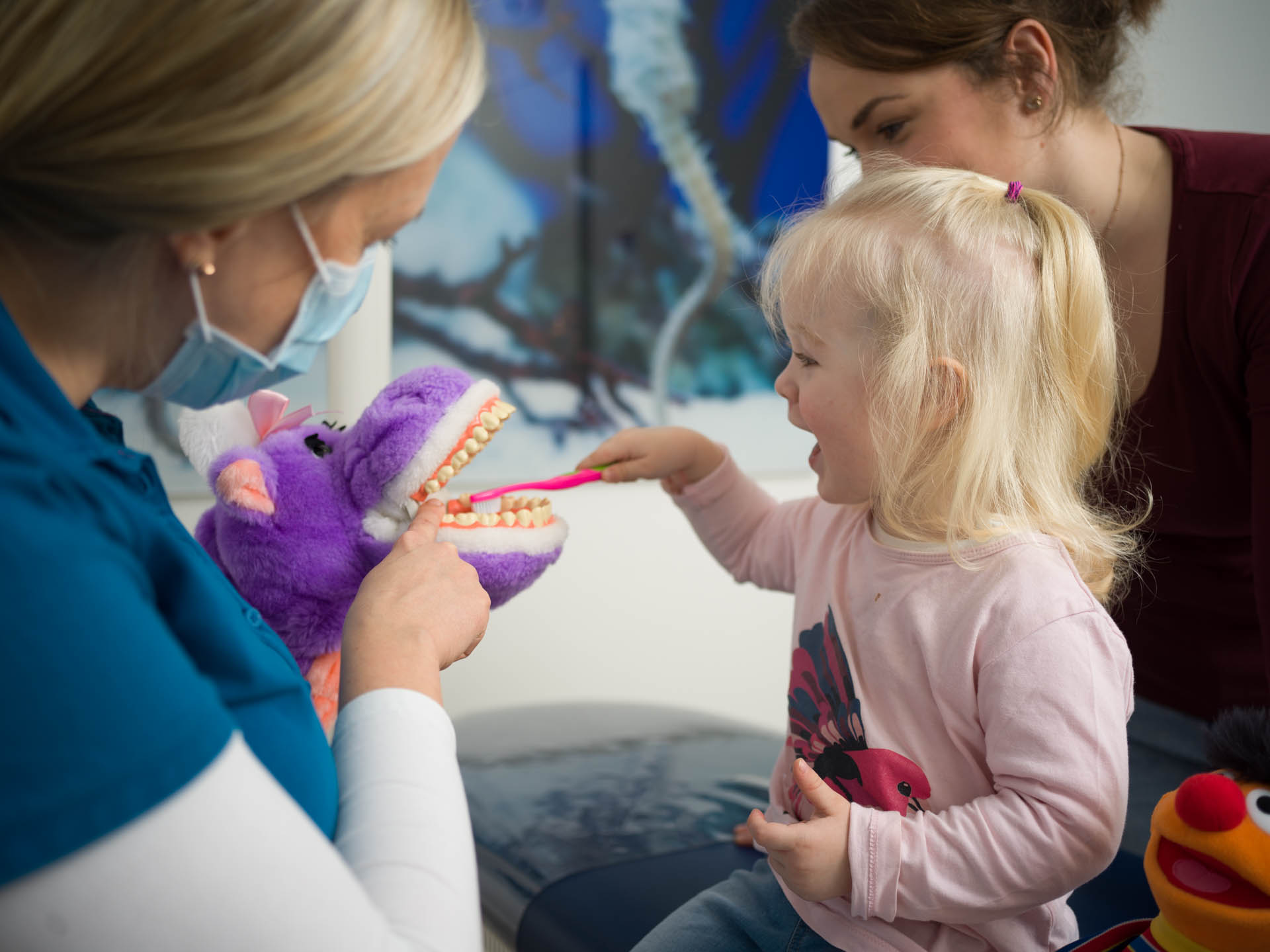 Kennenlernen Kinderzahnarztpraxis Brun Potsdam