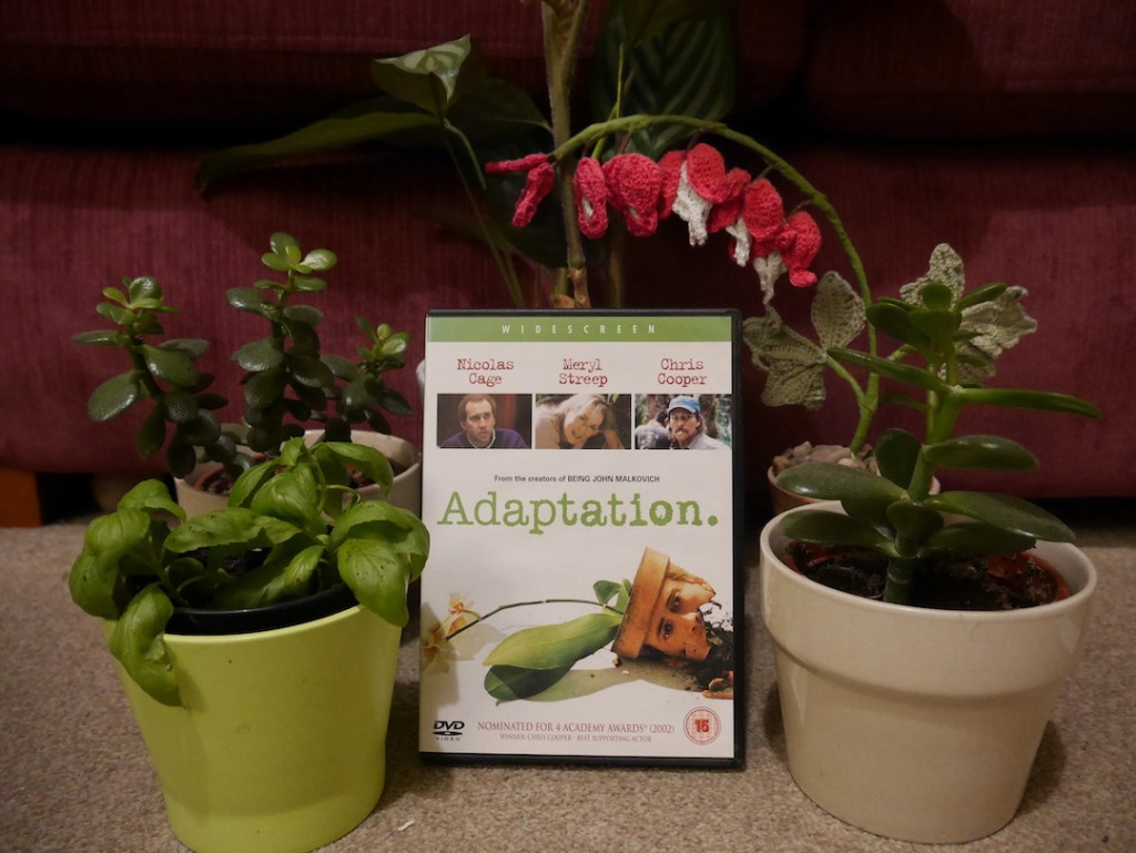 Six on a Saturday Adaptation