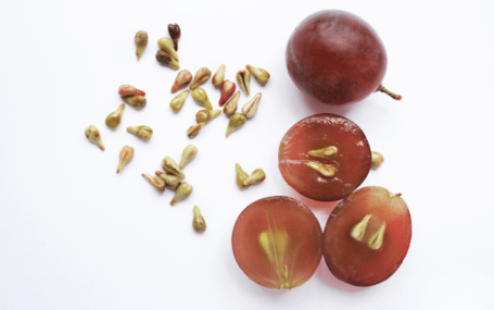 Grape seed extract treatment for ADHD