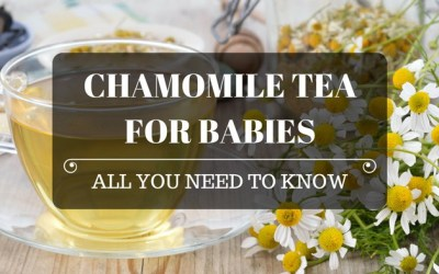 Chamomile Tea for Babies: All You Need to Know!