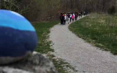 Community Walks and the ripple rocks