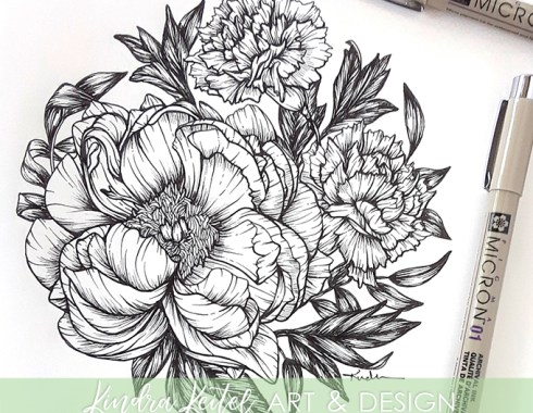 peony carnation botanical illustration