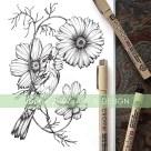 cosmos botanical illustration, prairie warbler