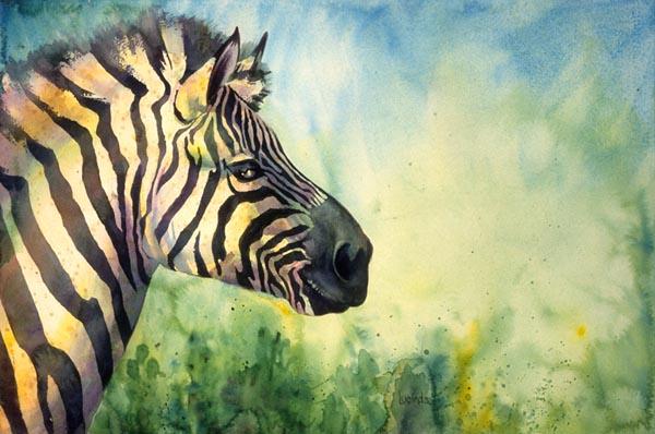 Zebra by Lucinda Hayes