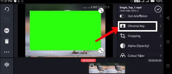 Kinemaster Chroma key