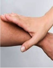 test muscular kinesiología