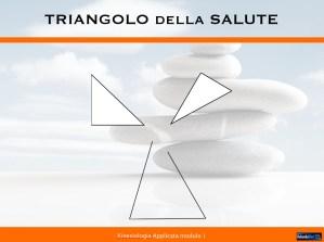 triangolointegratodella-salute-2-1