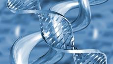 Transzgenerációs Epigenetikus Kineziológia – TEK©® Dr Varju Márta rendszere I. szint TEK I. szint A. része:2018. március 3-7.(5 nap, szombattólszerdáig) TEK I. szint B. része: 2018. április 11-15. (5 nap, […]