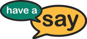 Have A Say Logo