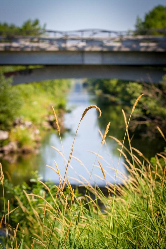 Sammamish River trail