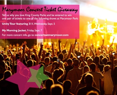 Concert Ticket Giveaway