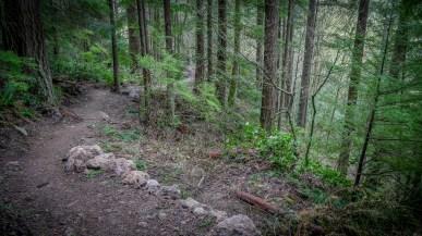 Cougar-Squak Corridor