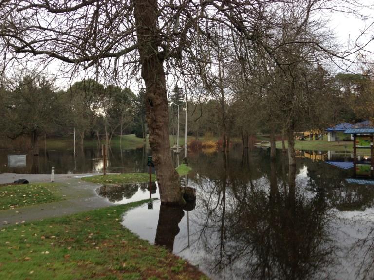 2015 DTP Flood 3