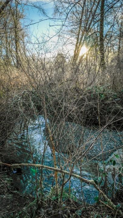 Judd Creek