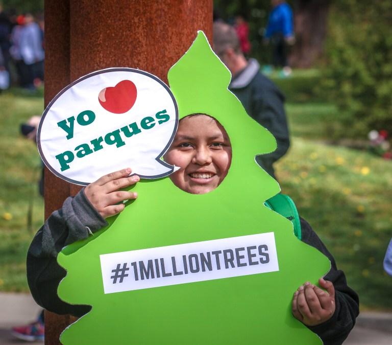 1 Million Trees (11 of 12)