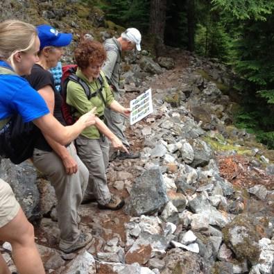 """""""Weed Watchers"""" encuentran una planta invasora durante una excursión a Mt. Teneriffe."""