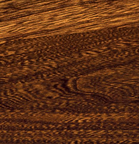 Elm Wood Grain
