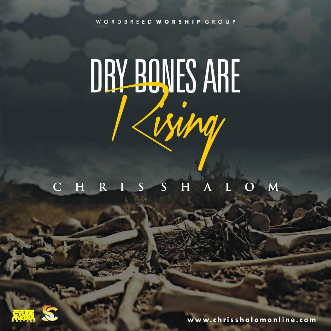 "Chris Shalom Releases New Single ""Dry Bones Are Rising"" On MTN Music Plus"