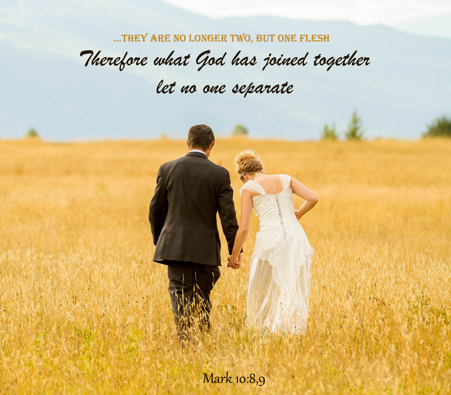10 Bible Quotes For Love Hope And Strength Kingdomboiz