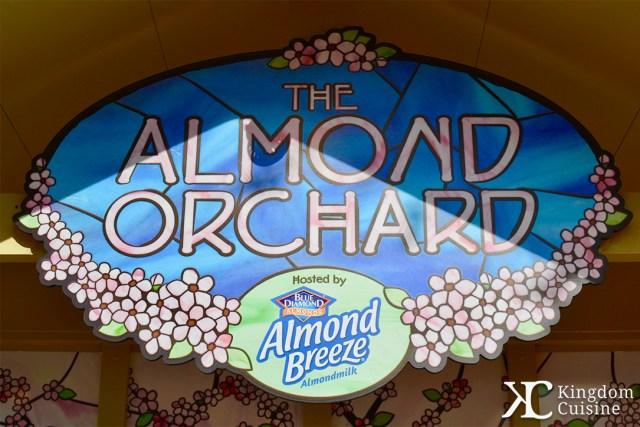 AlmondOrchard11