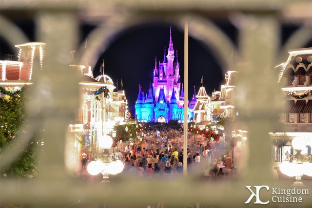 magickingdom_castle_16