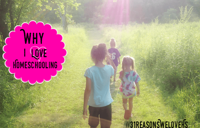 31 Reasons We Love Homeschooling Party and Giveaway