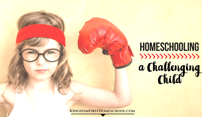 Homeschooling a Challenging Child