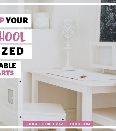 Tips to end homeschool clutter and keep it organized