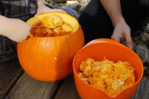 Halloween pumpkin carving removing the guts