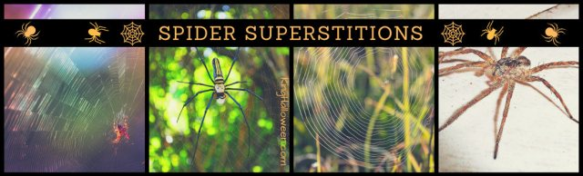 Spider Superstitions Imagery