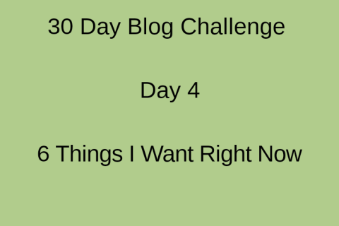 picture with inscriptions of 30 day blog challenge