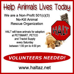 kingman-AZ-HALT-animal-adoption-Animal-Rescue-Banner-2016