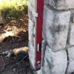 Kansas City Foundation Repair Specialists