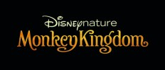 Monkey-kingdom-logo