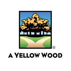 a-yellow-wood