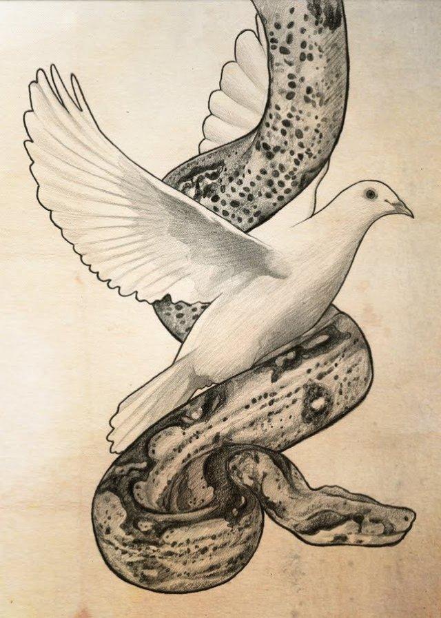 https://i2.wp.com/kingsenglish.info/wp-content/uploads/2011/08/snake_dove.jpg?resize=640%2C897