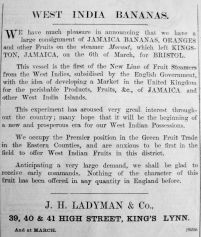 1901 Mar 22nd Ladymans