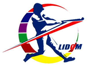 dominican_winter_league_logo
