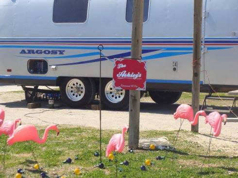 Airstream more flamingos