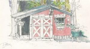 Don's Chicken Coup _Color