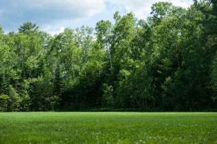 green grass beautiful field kingswood camp sleepaway overnight boys summer camp