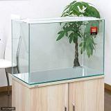 60cm水槽で金魚飼育を楽しむために